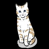 猫のフリーイラスト