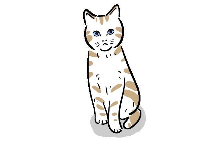 猫のフリーイラスト おしゃれでかわいいフリーイラスト素材 イラストナビ