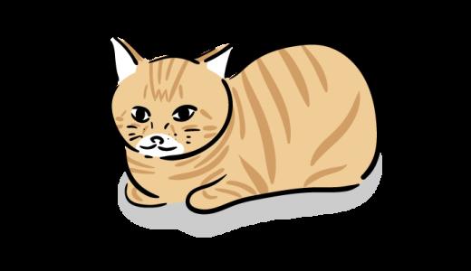 茶トラ猫のフリーイラスト
