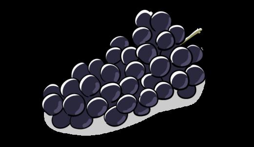 ブドウの無料イラスト素材